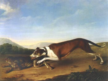 И.Ф. Гроот. Собака и заяц
